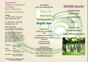 Flyer Wildkräuterführungen 2017-Seite 1